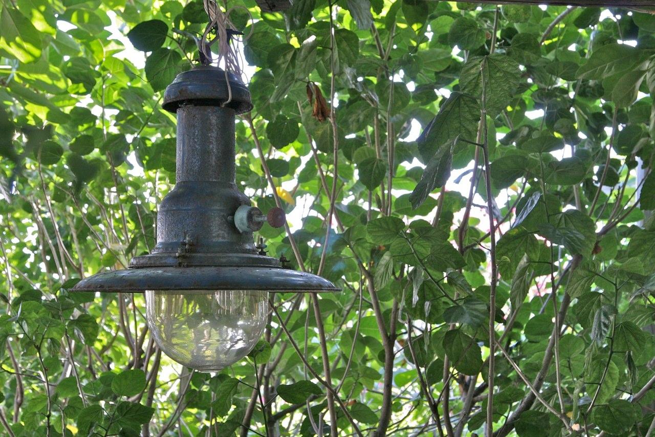 La lampara - Il ristorante